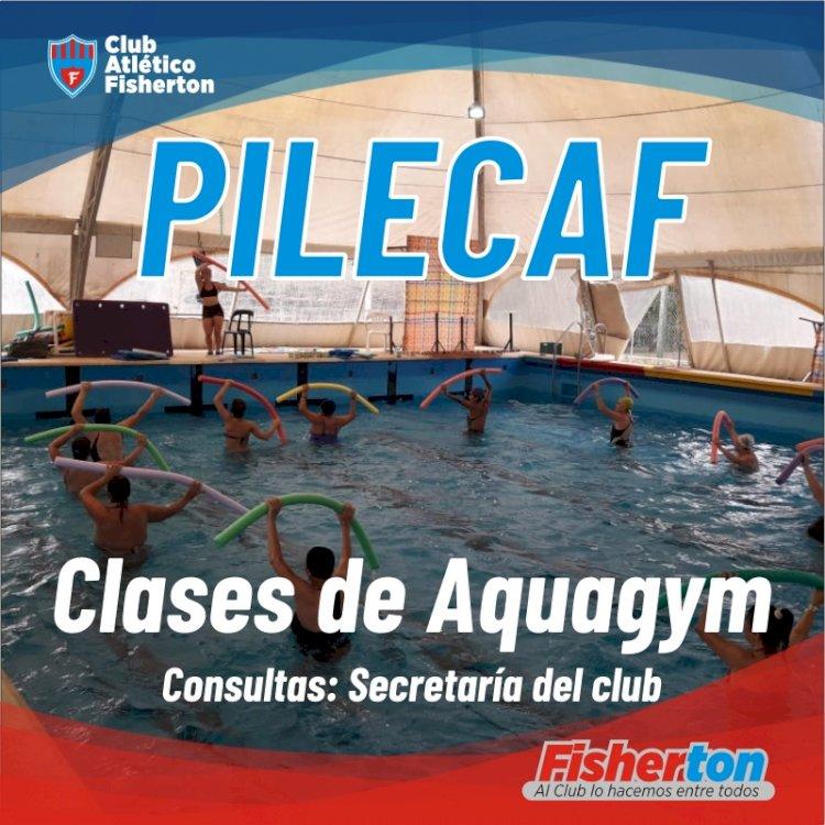 Múltiples actividades en la PileCAF